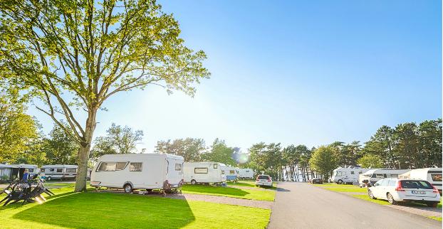 Campingplatsen som flyttade